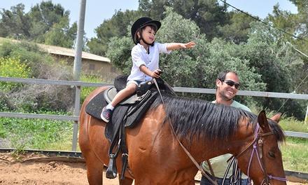 רכיבת סוסים לילד הכוללת 2 סיבובים בחוות תעוז הפסטורלית ב 15 ₪ בלבד, בליווי מדריך מנוסה. תקף בחוהמ